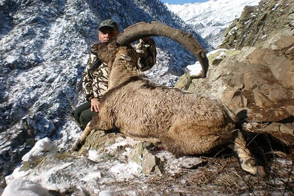 Bezoar Jagd Türkei Erfolg